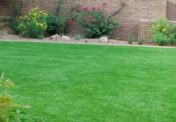 Artificial Grass For Backyards; A Unique Way For Your Lawn's Transformation