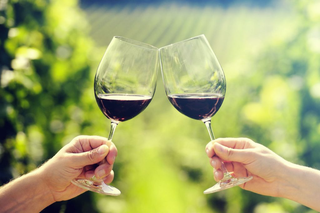 wine tours, accommodation and experiences in South Australia