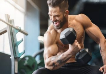 Steroids Will Help You Get the Very Best Body Muscles