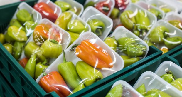 Reaping from the Advantages of Plastic packaging